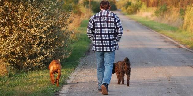 Tipp des Monats – März 2013: Spazieren gehen mit dem Hund