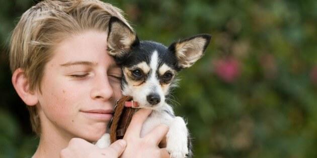 Tipp des Monats – Juli 2013: Glücklicher Hund – Glücklicher Mensch
