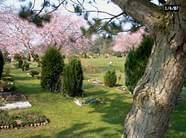 Foto vom Tierfriedhof Nord in Norderstedt