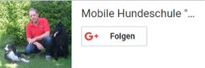 Google Plus Follow Box